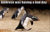 bad day penguin.png