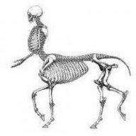 centaurgod